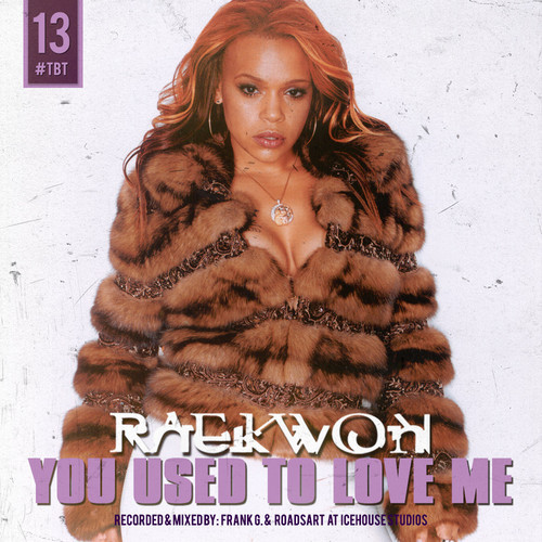 Raekwon - You Used To Love Me cover
