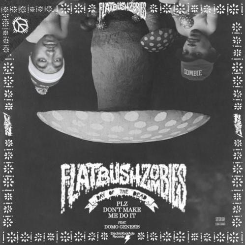 Flatbush ZOMBIES - Plz Don't Make Me Do It