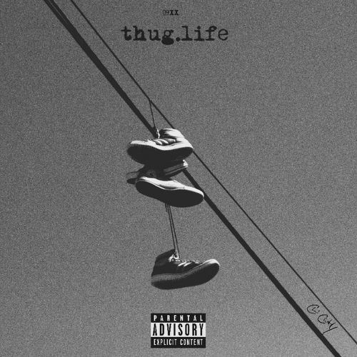 Chi City - Thug.Life